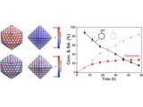中国科大取得孪晶金属纳米晶催化作用机制研究新进展