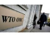 WTO保护期限到期后,我国粉体行业的思考