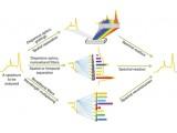 清华大学发现胶体量子点纳米材料制作微型光谱仪的新方法