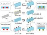 中科院山西煤化所利用原子层沉积技术设计制备出新型纳米催化剂