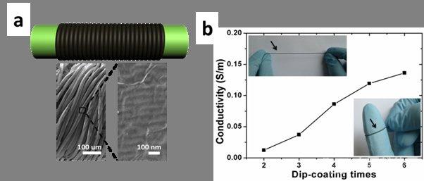 石墨烯纤维传感器结构图