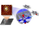 大连化物所等纳米石墨烯限域单原子铁催化剂研究获进展