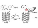 金属所在纳米碳催化作用本质研究方面取得进展