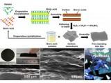 大连理工大学在超大面积二维纳米碳材料研究取得新进展