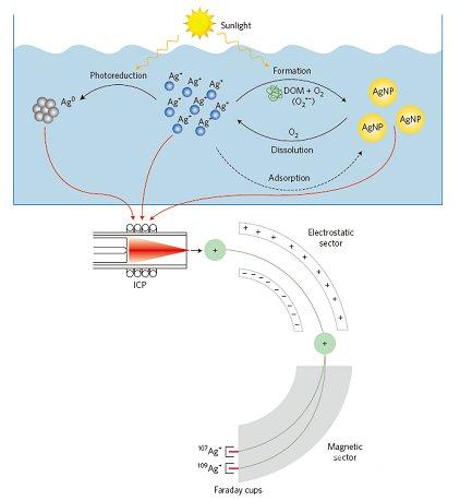 研究人员发现纳米材料转化过程中稳定同位素分馏现象
