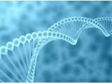 纳米颗粒可通过乳汁安全转运