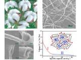 硬碳微管作为高性能钠离子电池负极材料的研究