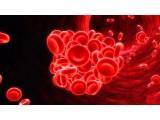 治癌利器:纳米人工红细胞