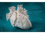 3D打印优势渐显 细数那些被3D打印影响的行业