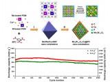 同力协契、多元协同共掺杂提升锂离子电池负极材料的综合使役性能