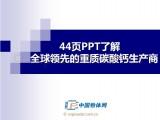 44页PPT了解全球领先的重质碳酸钙生产商