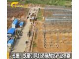 2017碳酸钙需求量将突破4000万吨 贺州筑巢引凤打造碳酸钙产业集群