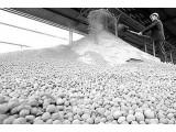 """变工业废石膏为宝 武汉三年从""""废渣""""里淘出50亿元"""