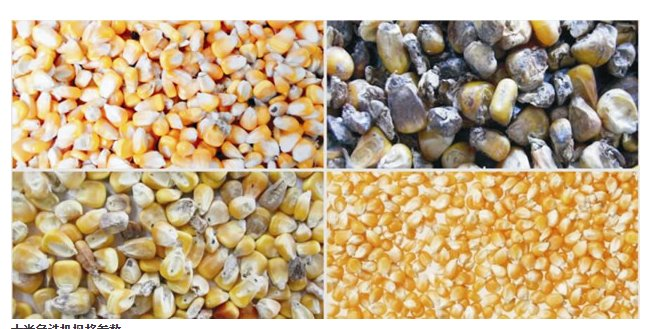色选设备 安徽捷泰智能科技有限公司 玉米专用色选机  8, 电路板经过