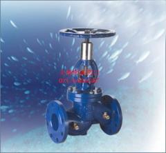 进口水利控制阀-上海树典阀门100X