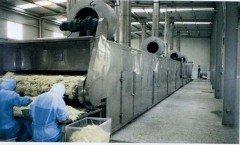 DWT系列脱水蔬菜干燥机的图片