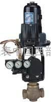 Hi-Flow系列(2000VA)气动薄膜调节阀