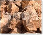 钾、钠长石系列的图片